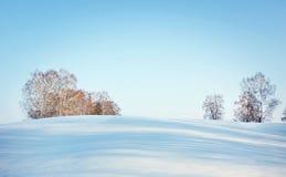 Härligt vinterlandskap i solig dag med blå himmel och träd på horisont Fotografering för Bildbyråer
