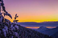 Härligt vinterlandskap med landskap för skoglilavinter med solnedgång Amazimg solnedgång royaltyfri bild