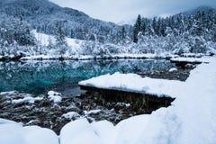 Härligt vinterlandskap på den rena sjön Zelenci i molnig soluppgång, Kranjska Gora, Slovenien royaltyfria bilder