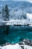 härligt vinterlandskap på den rena sjöZelenci källan i molnig soluppgång, Kranjska Gora, Slovenien arkivfoton