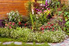 Härligt yttre fragment av trädgården med blommor Arkivfoton