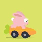 Häschen, das Karotte-Mobile läuft Stockfotografie