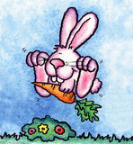Häschen-Kaninchen Lizenzfreie Stockfotos