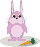 Häschen mit Karotte Stockbilder
