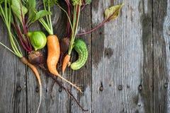 Hässliche Karotte, Rote-Bete-Wurzeln und Gurke Stockbilder
