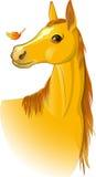 Häst аutumn royaltyfri illustrationer