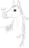 Häst аutumn Royaltyfri Bild