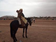 Häst Arkivbild