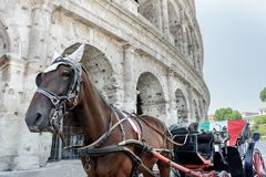 Häst dragen vagn eller botticella i italienare på den Rome gatan framme av forntida Colosseum Arkivfoton