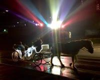 Häst dragen vagn på natten Royaltyfria Foton