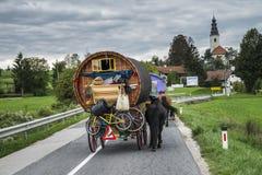 Häst dragen vagn på vägen arkivbild