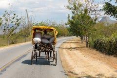 Häst dragit medel på en gata i Kuba royaltyfri fotografi