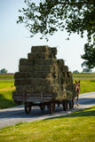 Häst drog Hay Wagon Arkivfoto