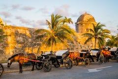 Häst drog touristic vagnar i det historiskt arkivbild