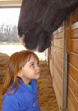 Häst- förälskelse som tidigt startar Arkivfoton