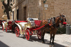 häst för 2 vagn royaltyfri foto