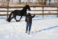 Häst för frisian för mandressyrsvart arkivfoto
