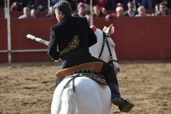 Häst för tjurstridighet Royaltyfria Bilder