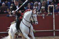 Häst för tjurstridighet Royaltyfri Foto