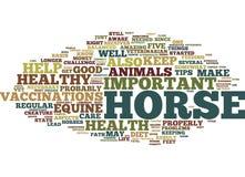 Häst- hälsa fem spetsar för ett sunt begrepp för moln för ord för hästtextbakgrund vektor illustrationer