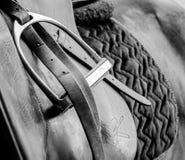 Häst - hästsadel royaltyfri foto