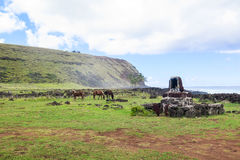 Häst i påskön, Chile Royaltyfri Foto