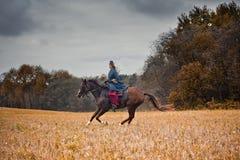 Häst-jakt med damtoalett i ridningvana arkivfoton