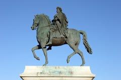 häst lyon Royaltyfria Bilder