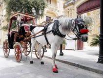 Häst med vagnen på den huvudsakliga porten av Mdina, ö av Malta Arkivbild