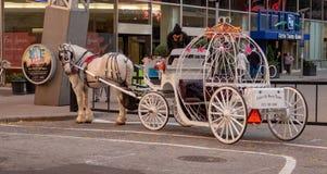 Häst- och barnvagnritt arkivfoton