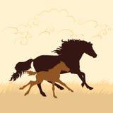Häst- och fölvektorillustration Royaltyfri Illustrationer