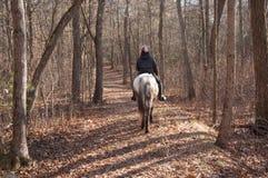 Häst på Rider Heading Home Fotografering för Bildbyråer