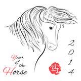 Häst på vit bakgrund Arkivbilder