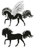häst påskyndade pegasus Royaltyfri Foto