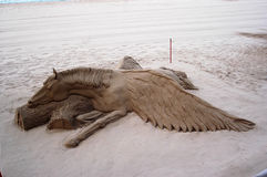 häst påskyndade pegasus Royaltyfria Bilder