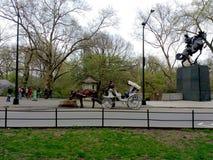 Häst som dricker, ekipageritter i Central Park, NYC, NY, USA Royaltyfria Foton