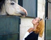 häst som kisssing Arkivbild