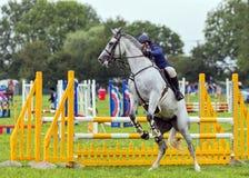 Häst som vägrar att hoppa, Hanbury Countrywide show, England royaltyfri bild