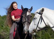 hästar älskar två Arkivbild