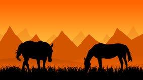 hästar betar två vektor illustrationer