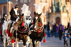 Hästar i Krakow royaltyfria bilder