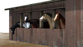 Hästar i ladugård - på vit bakgrund Royaltyfri Bild