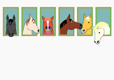 Hästar med head ut stabila fönster Arkivfoton