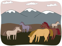 Hästar på ängen Royaltyfri Illustrationer