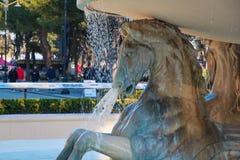 Hästar på vit marmorerar springbrunnen royaltyfri foto