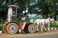 Hästar som exploateras till vagnen i Kolkata Arkivfoto