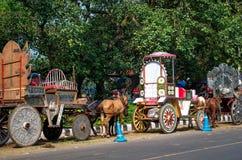 Hästar som exploateras till vagnen i Kolkata Arkivbild