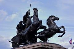 Hästar vrålar för fred arkivfoto