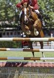 hästbanhoppning Royaltyfri Bild