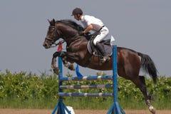 hästbanhoppningshow Arkivbild